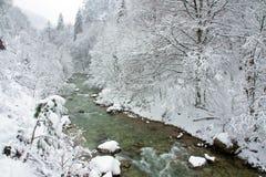 País das maravilhas do inverno do vintage Fotos de Stock