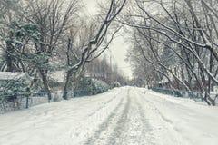 País das maravilhas do inverno sem o sol imagem de stock