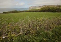 País de Gales, el Reino Unido - prados verdes y mares azules en un día soleado Foto de archivo libre de regalías