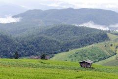 País de la colina Imagen de archivo libre de regalías