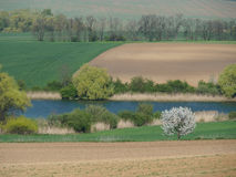 País de la primavera en Eslovaquia imágenes de archivo libres de regalías
