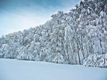 País de las maravillas del invierno Fotos de archivo