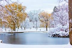 País de las maravillas del invierno de Boston fotos de archivo