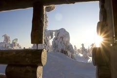 País de las maravillas del invierno de Laponia Fotografía de archivo
