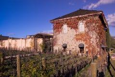 País de vinho Fotografia de Stock