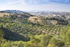 País de vino de Paso Robles Vista Imagenes de archivo