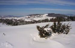 País del invierno fotografía de archivo