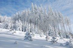 País del invierno de Beskydy Imagen de archivo libre de regalías