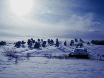 País do inverno em Serbie Imagens de Stock Royalty Free