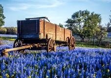 País do monte de Texas imagens de stock