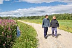 País finlandés Fotografía de archivo libre de regalías