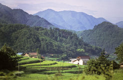 País japonês Foto de Stock Royalty Free