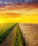 País seco com solo rachado e prado com grama no por do sol Foto de Stock Royalty Free