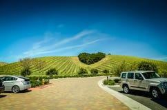País vinícola central de California Fotografía de archivo
