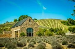 País vinícola de California Foto de archivo libre de regalías