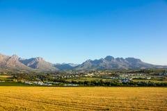 País vinícola de Stellenbosch Foto de archivo