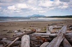 Países de la costa del Pacífico foto de archivo libre de regalías