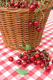 Paño rojo de la comida campestre con la cereza Foto de archivo libre de regalías