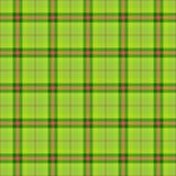 Pañuelo a cuadros verde Foto de archivo libre de regalías