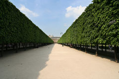 pałac królewski Paryża zdjęcie royalty free