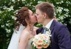 Państwa młodzi całowanie obrazy royalty free