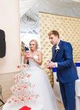Państwa młodzi dolewania szampan w szkło Fotografia Stock