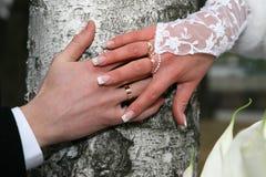 Państwa młodzi przedstawienie ich ręki jest ubranym obrączki ślubne Obraz Royalty Free