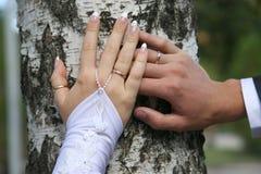 Państwa młodzi przedstawienie ich ręki jest ubranym obrączki ślubne Obraz Stock