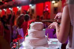 Państwo młodzi chwyta nóż i cięcie ślubny tort Obraz Stock