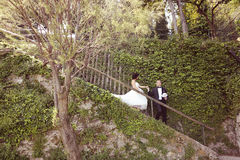 Państwo młodzi na schodkach Fotografia Stock