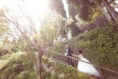 Państwo młodzi na schodkach Obraz Royalty Free
