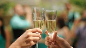 Państwo młodzi radośnie clinking ślubnych szampańskich szkła, odświętność ich ślub zdjęcie wideo
