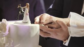 Państwo młodzi target689_1_ ich ślubnego tort blisko lily farbuje miękki na widok wody zdjęcie wideo