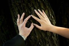 Państwo młodzi z pierścionkami Zdjęcia Royalty Free