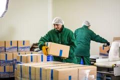 04 Październik 2017 - Vinnitsa, Ukraina Pracownik fabryczny z dźgnięciem Obraz Stock