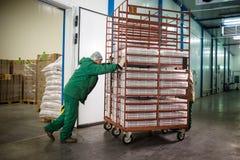 04 Październik 2017 - Vinnitsa, Ukraina Pracownik fabryczny z dźgnięciem Fotografia Stock