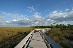 Pa-Hay-Okee boardwalk in Everglades National Park, Florida. stock image