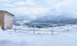 Paśnik dla koni w zimie Fotografia Royalty Free