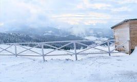 Paśnik dla koni w zimie Obrazy Royalty Free
