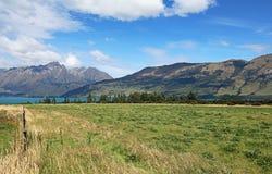 Paśnik na Jeziornym Wakatipu Fotografia Stock