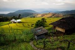 Pa Pong Piang Rice Terraces Stock Photos