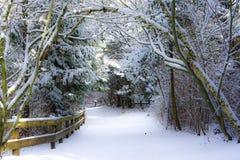 Pa?s das maravilhas do inverno foto de stock