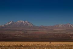 Paar bij atacamawoestijn Stock Foto's