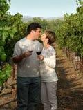 Paar bij wijngaard royalty-vrije stock fotografie