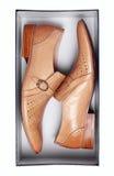 Paar bruine mannelijke schoenen in doos dat op wit wordt geïsoleerd Stock Fotografie