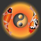 Paar buitensporige karper met yings yang symbool Royalty-vrije Stock Afbeeldingen