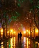 Paar dat bij steeg in nachtlichten loopt Stock Fotografie