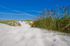 Paar dat in de zandduinen loopt met strandgras stock afbeeldingen