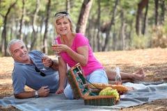 Paar dat een picknick heeft Stock Foto