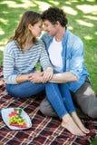 Paar dat een picknick heeft Royalty-vrije Stock Fotografie